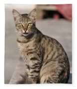 Cat In Aegina Island Fleece Blanket