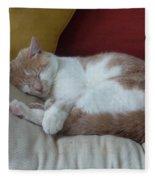 Barn Cat Nap Time Fleece Blanket