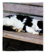 Cat Sleeping On Bench Fleece Blanket