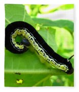 Catalapa Sphinx Caterpillar Fleece Blanket