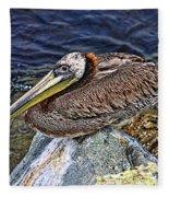 Catalina Pelican Fleece Blanket