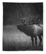 Cataloochee Bull Elk Fleece Blanket