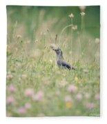 Catbird In The Wildflowers Fleece Blanket