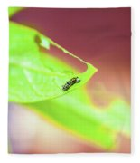 Caterpillar Fleece Blanket