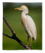 Cattle Egret On Stick Fleece Blanket