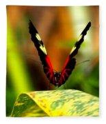 Cattleheart Butterfly  Fleece Blanket