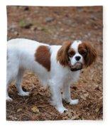 Cavalier Dog Fleece Blanket