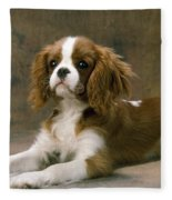Cavalier King Charles Spaniel Dog Lying Fleece Blanket