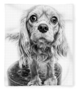 Cavalier King Charles Spaniel Puppy Dog Portrait Fleece Blanket