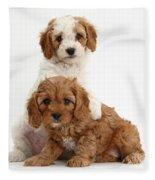 Cavapoo Puppies Fleece Blanket