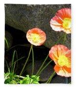 Cavy Poppies Fleece Blanket