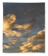 CC1 Fleece Blanket