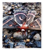 Cecropia Moth Blending In Fleece Blanket