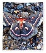 Cecropia Moth Fleece Blanket