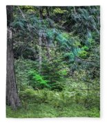 Cedar Along The Trail Of Cedars Glacier National Park  Fleece Blanket