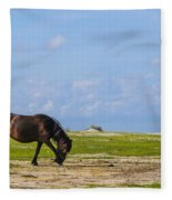 Cedar Island Wild Mustangs 48 Fleece Blanket