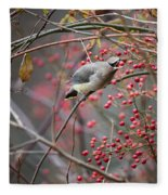Cedar Waxwing Feeding Fleece Blanket