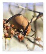 Cedar Waxwing - Img_0010-7x5 Fleece Blanket