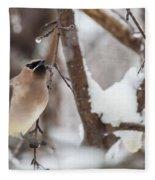 Cedar Waxwing In Winter Fleece Blanket