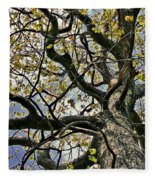 Cemetery Oak Fleece Blanket