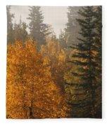 Central Park Yukon Fleece Blanket