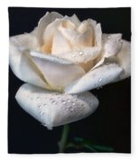 Champagne Rose Flower Macro Fleece Blanket