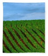 Chardonnay Sky 17990 Fleece Blanket