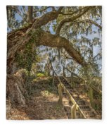 Charleston Oak Stairway Fleece Blanket