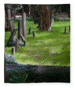 Charleston Sc Graveyard Fleece Blanket