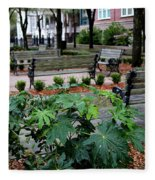 Charleston Waterfront Park Benches Fleece Blanket