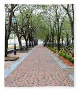 Charleston Waterfront Park Walkway Fleece Blanket