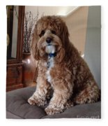 Charley At Home Fleece Blanket