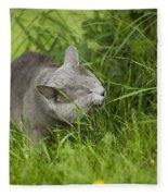 Chartreux Cat And Grass Fleece Blanket