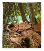 Cheakamus Lake Shoreline Fleece Blanket