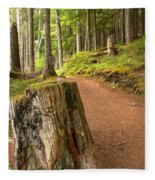 Cheakamus Lake Trail Fleece Blanket