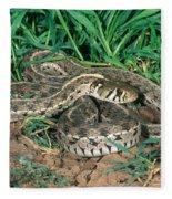 Checkered Garter Snake Fleece Blanket