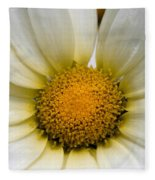 Cheery Daisy  Fleece Blanket