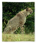 Cheetah-79 Fleece Blanket