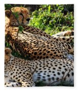 Cheetah - Masai Mara - Kenya Fleece Blanket