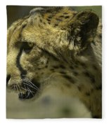 Cheetah On The Prowl Fleece Blanket