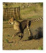 Cheetah On The Run Fleece Blanket
