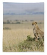 Cheetah Perched On A Mound Fleece Blanket