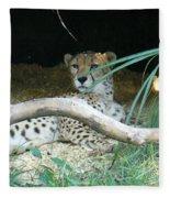 Cheetah Resting  Fleece Blanket