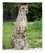 Cheetah's 01 Fleece Blanket
