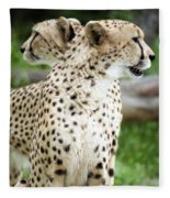 Cheetah's 04 Fleece Blanket