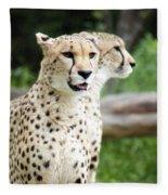 Cheetah's 05 Fleece Blanket