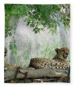 Cheetahs-120 Fleece Blanket