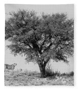 Cheetahs And A Tree Fleece Blanket