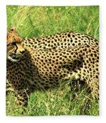 Cheetahs Running Fleece Blanket