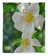 Cherokee Roses Fleece Blanket